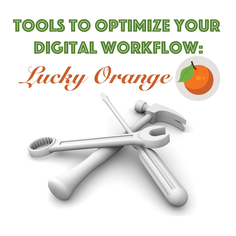 Lucky_Orange_Tool_Breakdown_Final.jpg